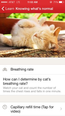 pets_image-learn